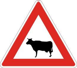 Dopravní značka A13